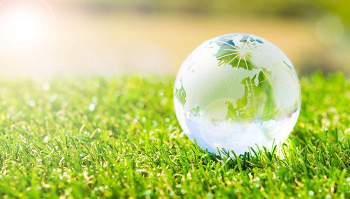 Avoir la conscience écologique c'est bien. Agir c'est encore mieux !