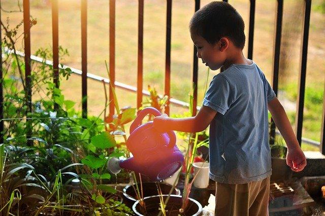 Apprendre à jardiner avec les enfants